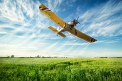 aviation accounting Arkansas